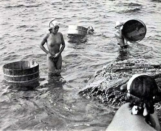Japanese nude divers
