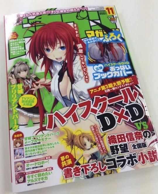 dragon magazine light novel oppai breast book cover otaku japan rias gremory high school dxd