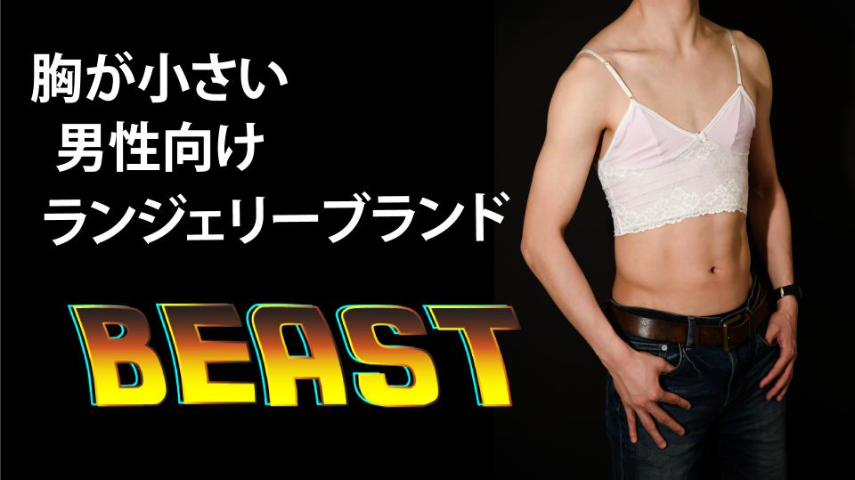 beast gomi hayakawa lingerie male underwear