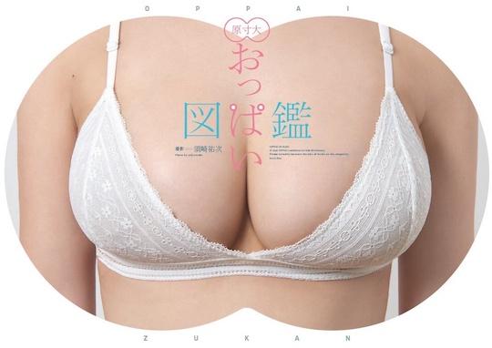 oppai zukan full-sized gravure idol breasts bust