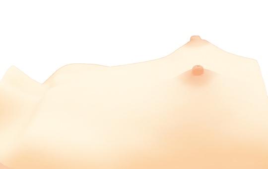 japanese flat chest fetish tiny-breasts bust hinnyu fetish toy